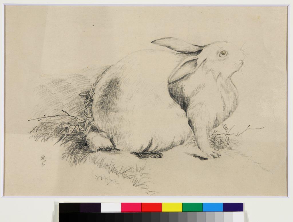 作品画像:ウサギ