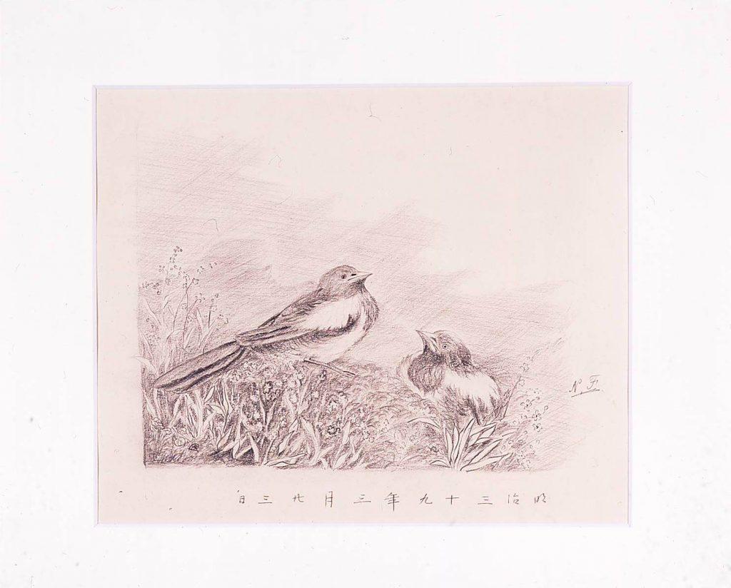 作品画像:小鳥