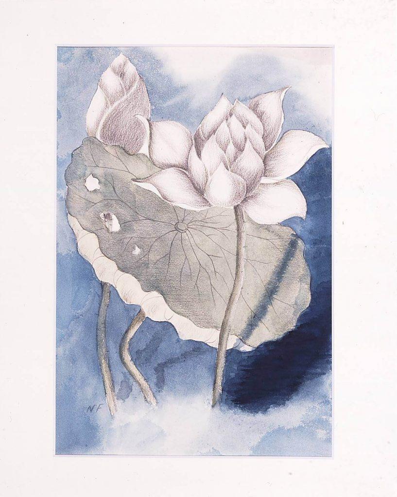 作品画像:蓮の花