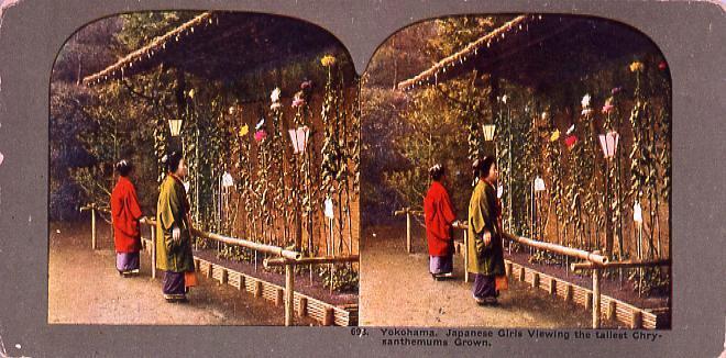 作品画像:Yokohama.Japanese Girls Viewing the tallest Chrysanthemuns Grown.693