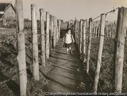 作品画像:柵の小道