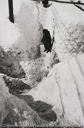 作品画像:危い雪路