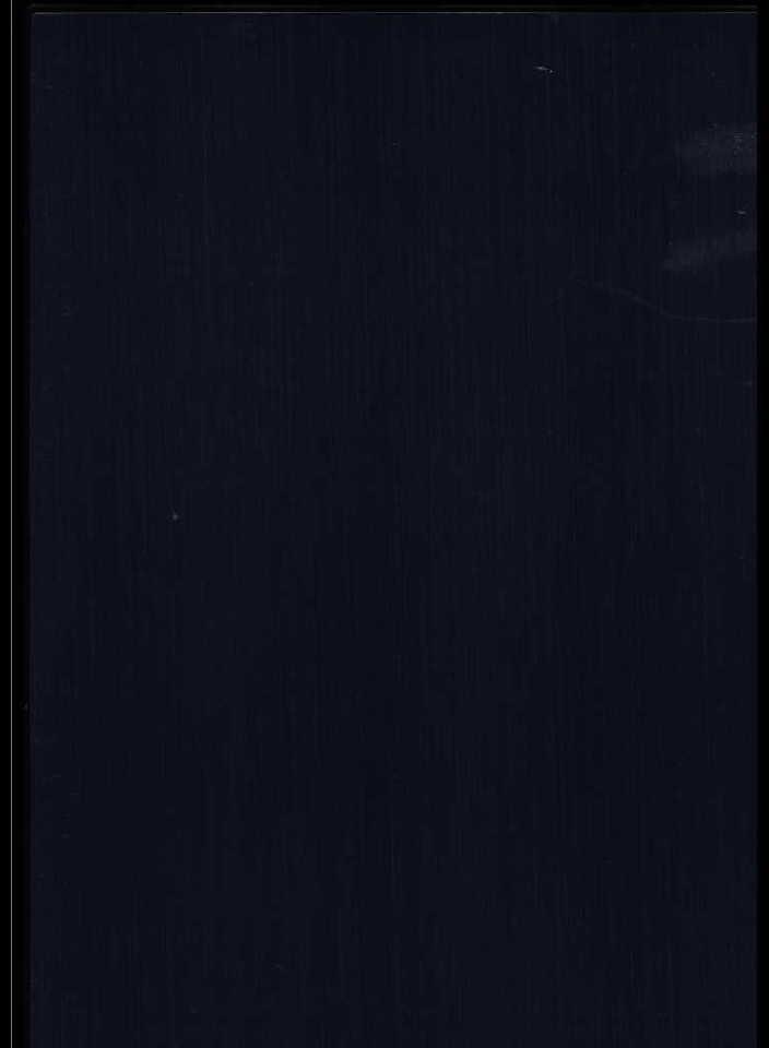 作品画像:画集 銀座 第1輯 第四図 銀座 バッカス