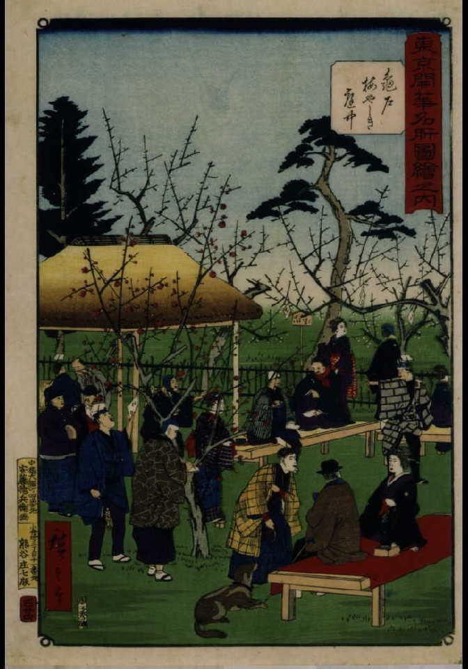 作品画像:東京開華名所図絵之内 亀戸梅やしき庭中