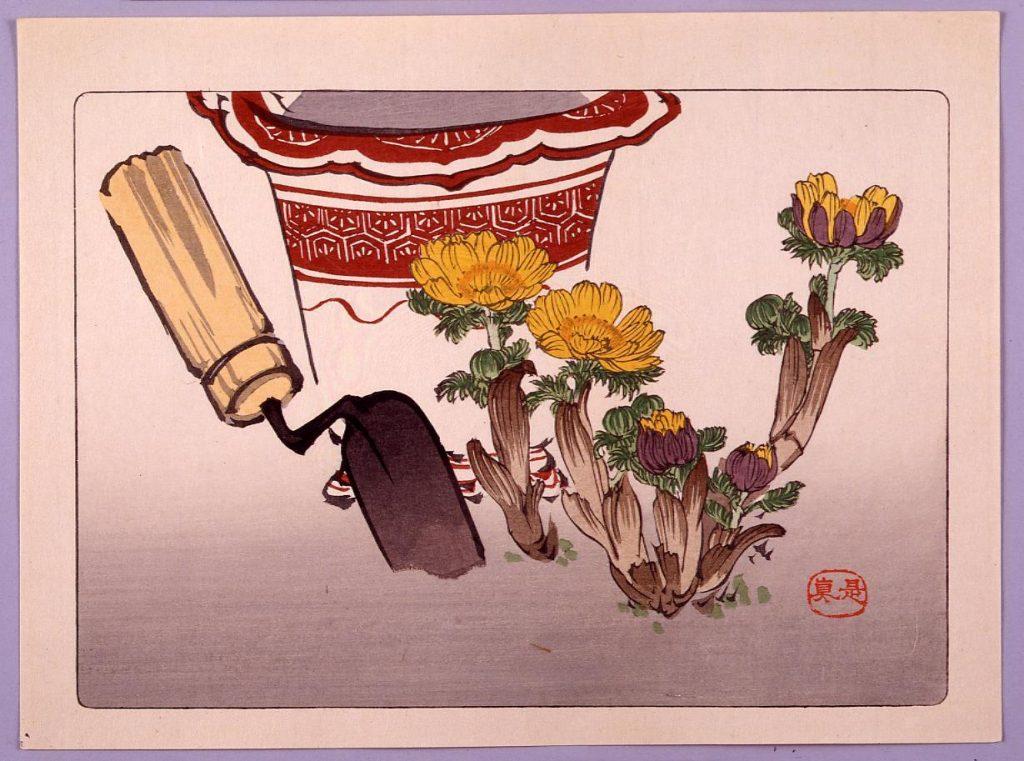 作品画像:福寿草図