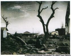 作品画像:(木のそばに座る人)