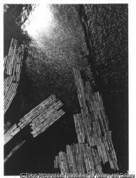 作品画像:木場