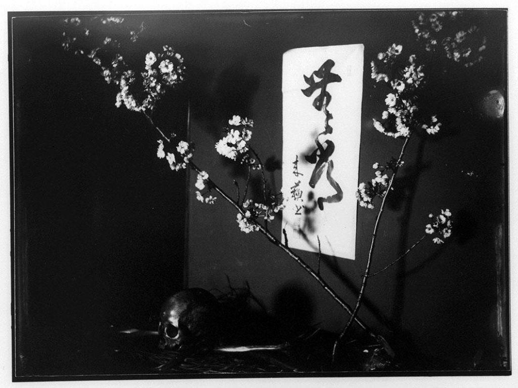 作品画像:桜と書と髑髏