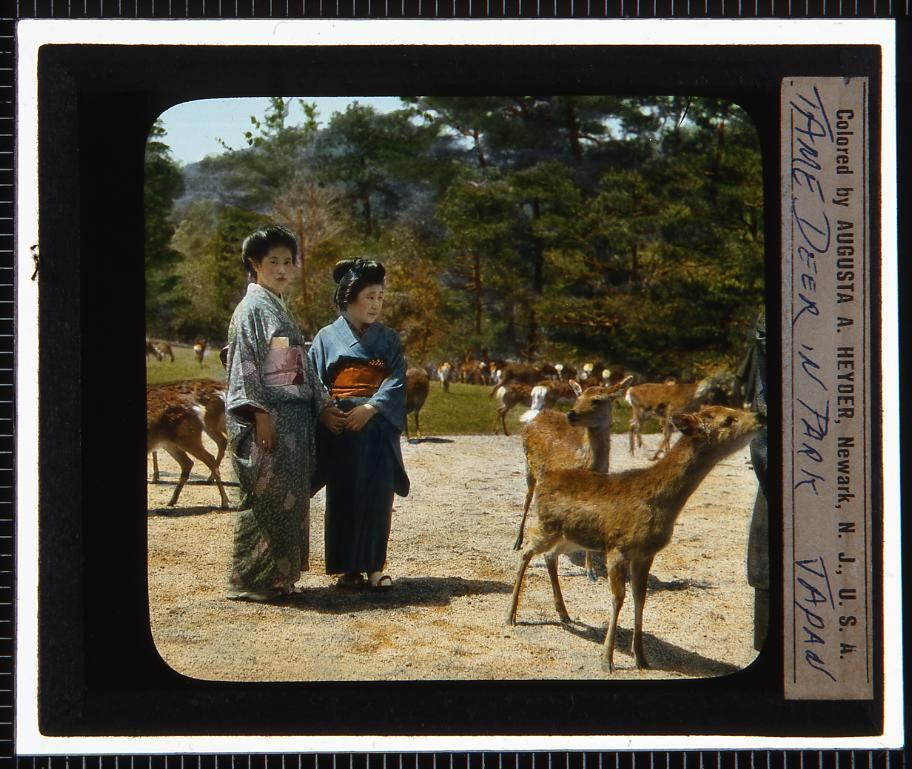 作品画像:鹿のいる公園(幻燈原板)
