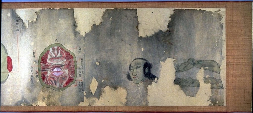 作品画像:平次郎臓図