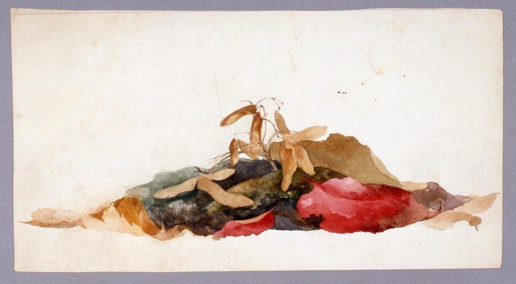 作品画像:水彩画 枯葉