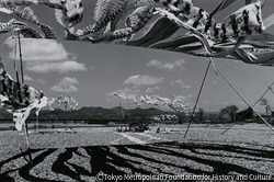 作品画像:京都・桂川