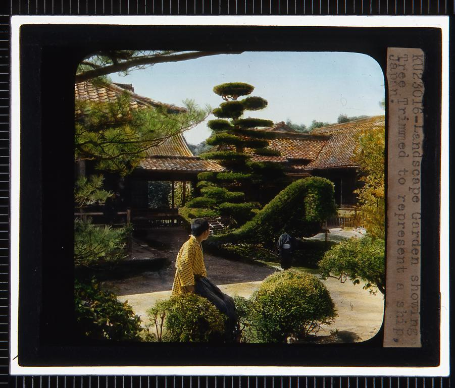 京都 金閣寺陸船松(幻燈原板)