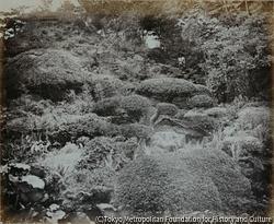 作品画像:江戸にある天皇の庭園