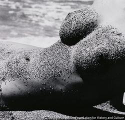 作品画像:ヌード(6)1945~49年