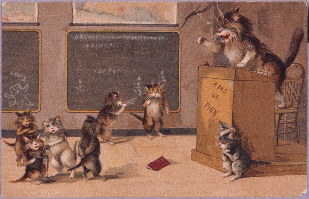 作品画像:外国製絵葉書 猫の授業