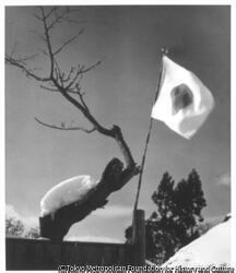 作品画像:(国旗と雪屋根)