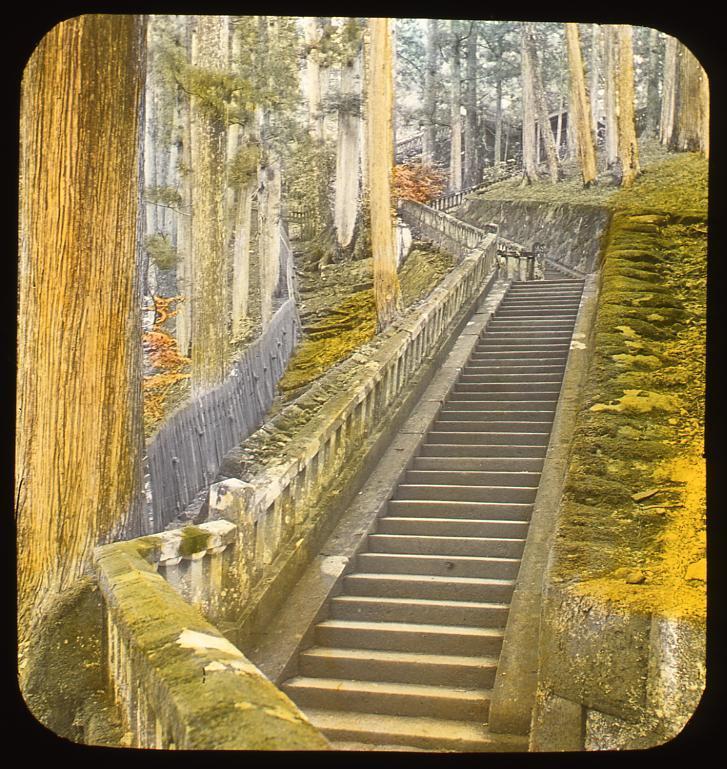 作品画像:杉並木の中の石段