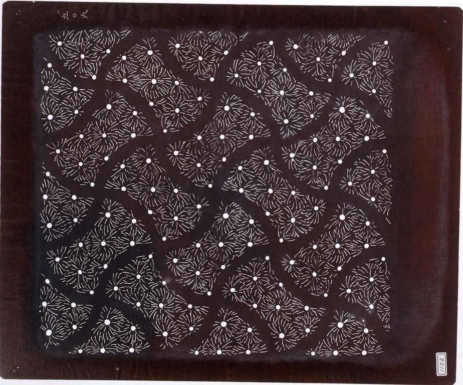 作品画像:長板中形型紙 花勝見(大判 追掛)