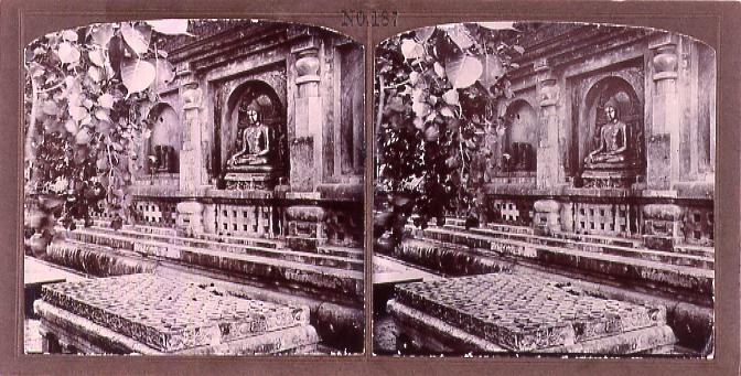 作品画像:仏像と菩提樹(No.187)