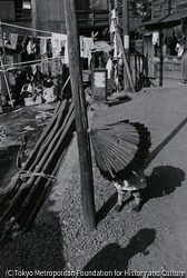 作品画像:佃島
