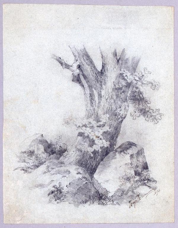 作品画像:素描  大きな樹木/素描 十字架磔刑