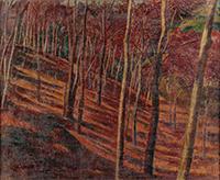 作品画像:雑木林の初冬