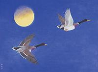 作品画像:月に飛ぶ