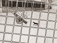 作品画像:[格子の中の荷車、人、犬]