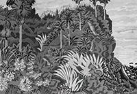 作品画像:南国風景