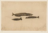 作品画像:三匹の小魚