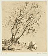 作品画像:庭の一隅