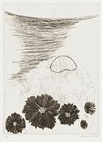 作品画像:13. それは、忽ち水面を走る黒い昆虫の羽と化し、・・・[『九つの夢から』より]