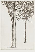 作品画像:二樹