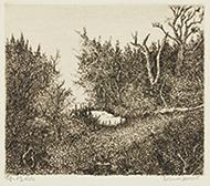 作品画像:森の中の空地(小)