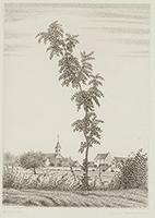作品画像:樹と村の小寺院