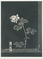 作品画像:薔薇と時