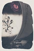 作品画像:湾頭に開く花