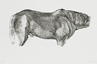 作品画像:馬のトルソー