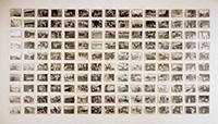 作品画像:D家のアルバム、1939年から1964年まで [L'Album de photographies de la famille D. entre 1939 et 1964]