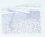 作品画像:リトグラフの水(線)