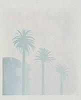 霧[『ウェザー・シリーズ』より]