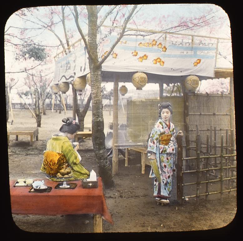 作品画像:花見をする女性たち