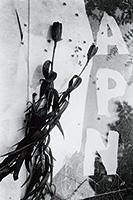 作品画像:「APN」(『アサヒグラフ』1953年12月2日号)のための構成