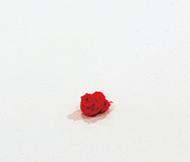 作品画像:knot (red)
