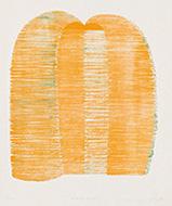 作品画像:orange nose