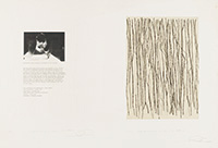 """作品画像:Surface is the Between - Between Vertical and Horizon - """"Field Horizon No.28"""" - For Performing"""
