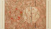 作品画像:Flower and Rope No.2
