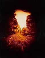 作品画像:東京の太陽(15)
