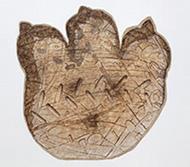 作品画像:テクノザウルスの足跡